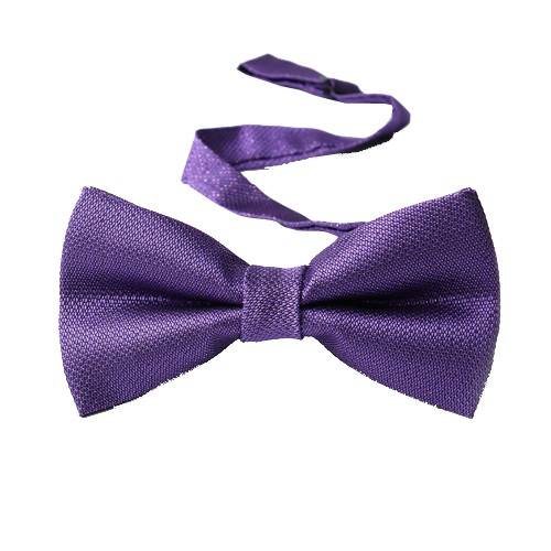 Classy Self Designed Bow Tie, Purple